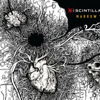 Iscintilla-Marrow1